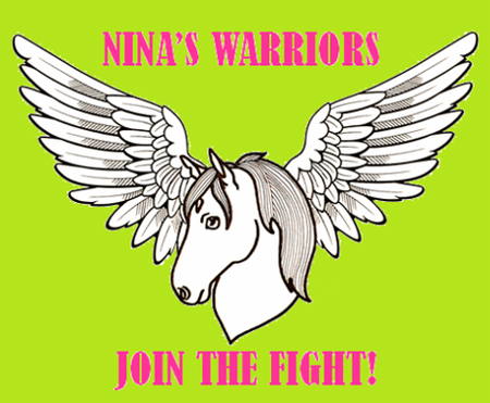 Nina's Warriors